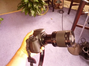 The Rokinon 500mm mirror lens with 2x doubler attached to my Canon T3i