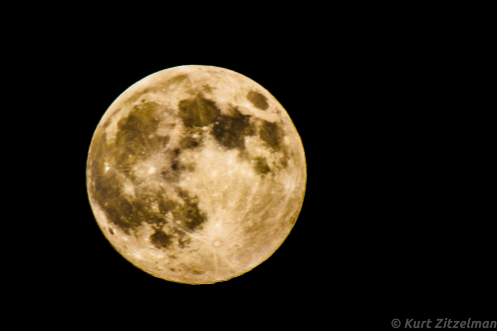 Taken with Canon T31 and Rokinon 500mm Mirror lens using 2x doubler (1000mm total)