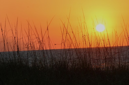 Sun setting over a dune on the Gulf of Mexico