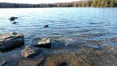 Promised Land Lake beach at Pickerel Point